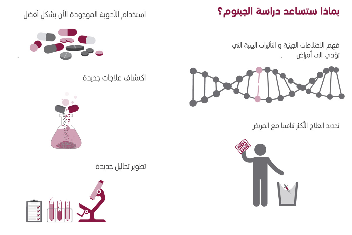 About-Genome-3-AR
