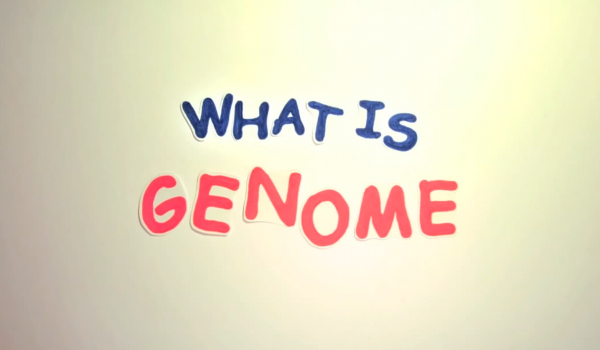 What is Genome